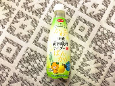 「POM えひめ逸品柑橘 愛媛河内晩柑サイダー」を飲んでみた!