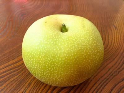 鳥取といえば梨!鳥取県の淀江産の新水梨を食べてみた!