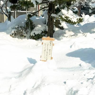 【2月8日の境港の大雪情報】雪が凄いけどまあなんとかイケる!