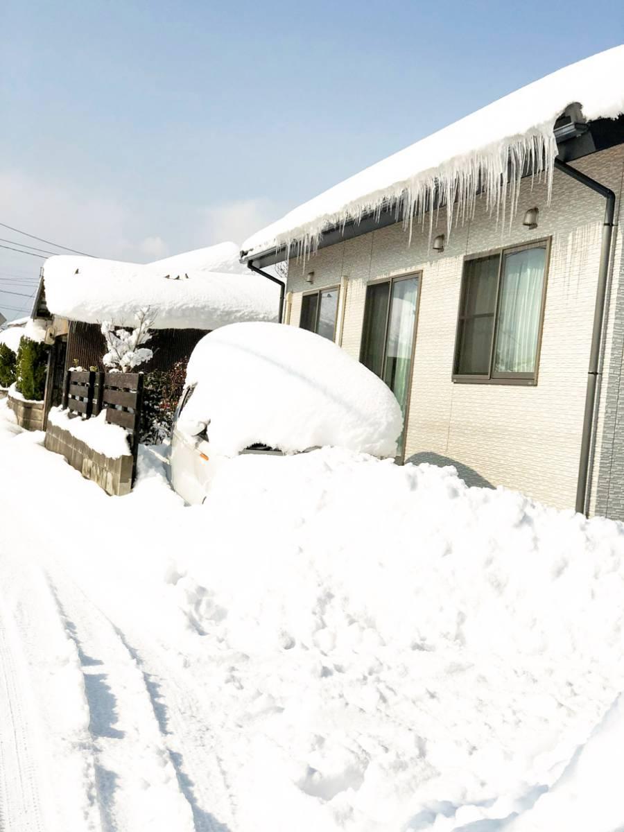 大雪 (11)