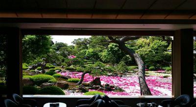 島根県松江市の大根島にある由志園の牡丹を見に行ってみた。